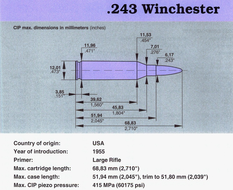 The Mild But Wild 243 Winchester - Ron Spomer Outdoors